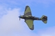 Il-2 Sturmovik belonging to the Flying Heritage Collection museum, Everett,...